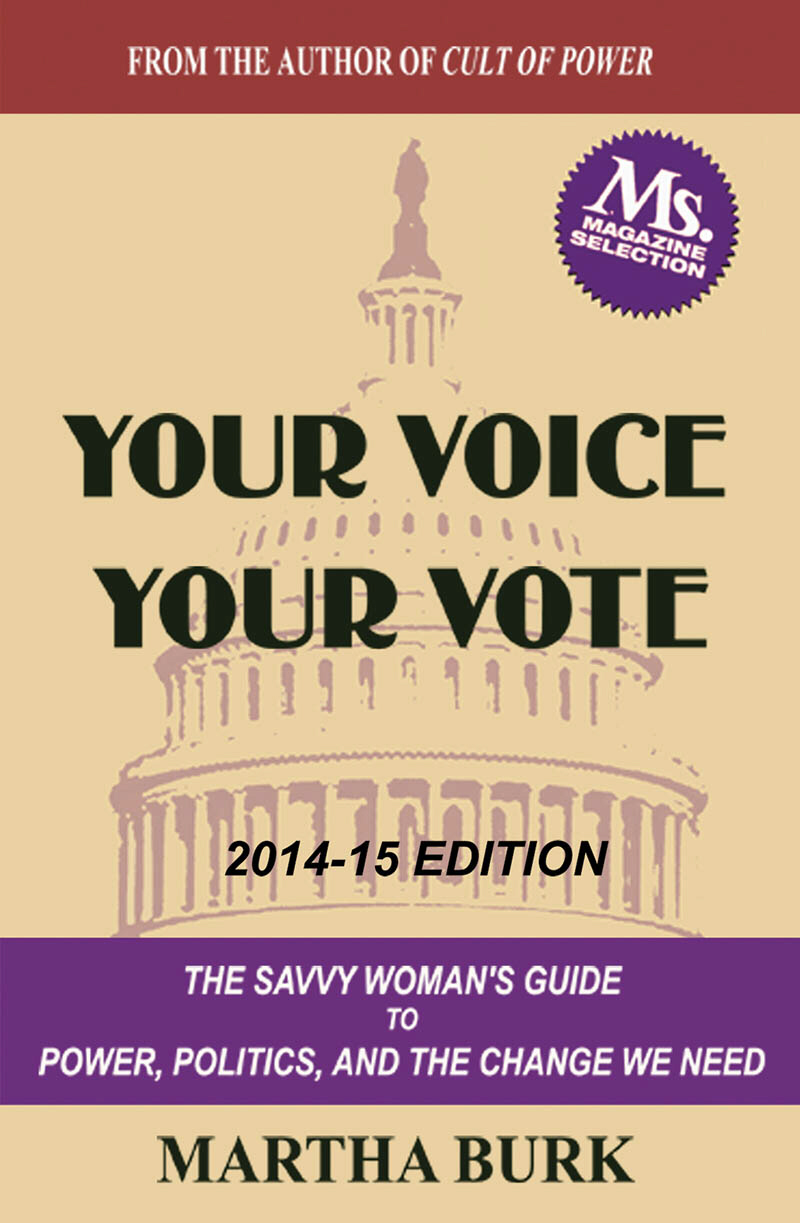 book, Your Voice, Your Vote